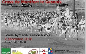 Cross de Montfort Le Gesnois